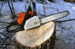 Chainsaw on a stump.